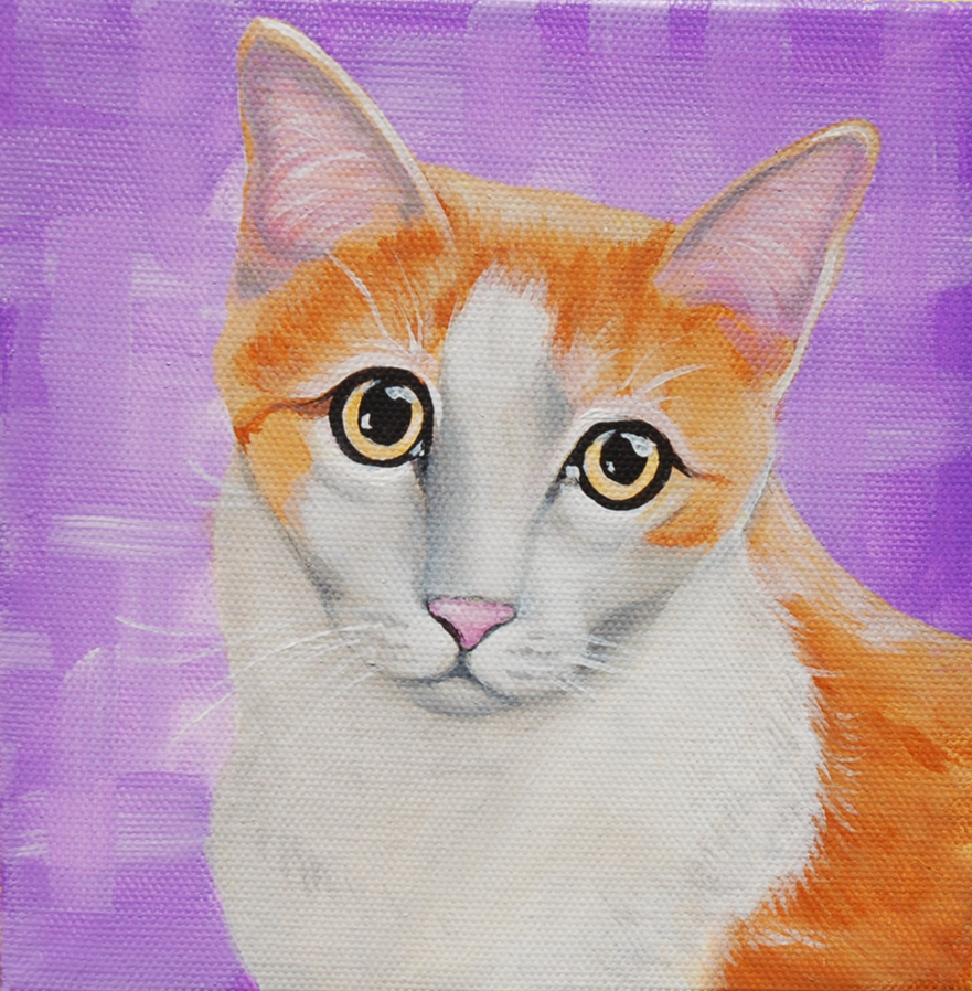 pretty kitty purple background cat painting on canvas
