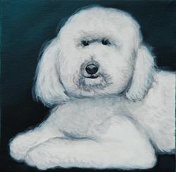 fancy poodle painting.png