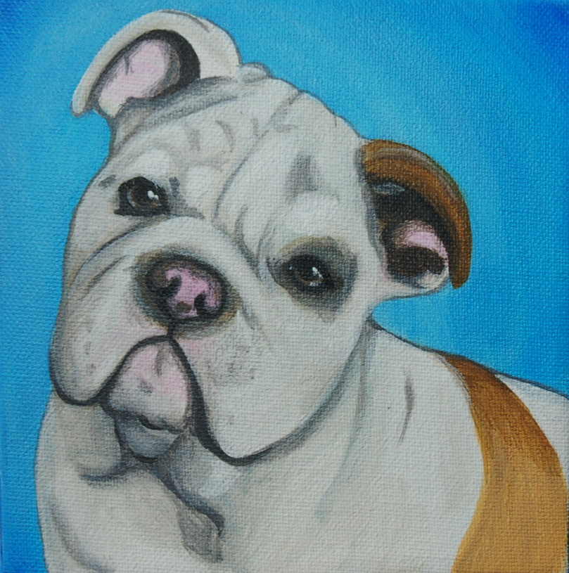 english bulldog painting on canvas lauren hammack.png