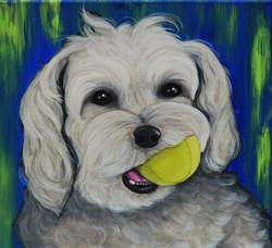 Tucker - custom pet painting.jpg