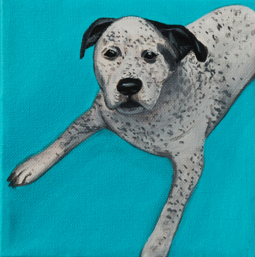 dalmation mix painting chewy.png