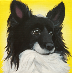 black and white pomeranian painting.png