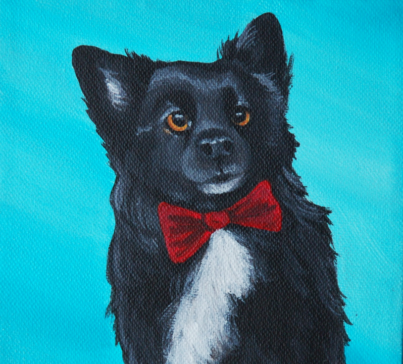 keeshond mix painting wearing bow tie.png