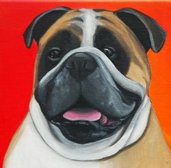 chubby bulldog painting.png