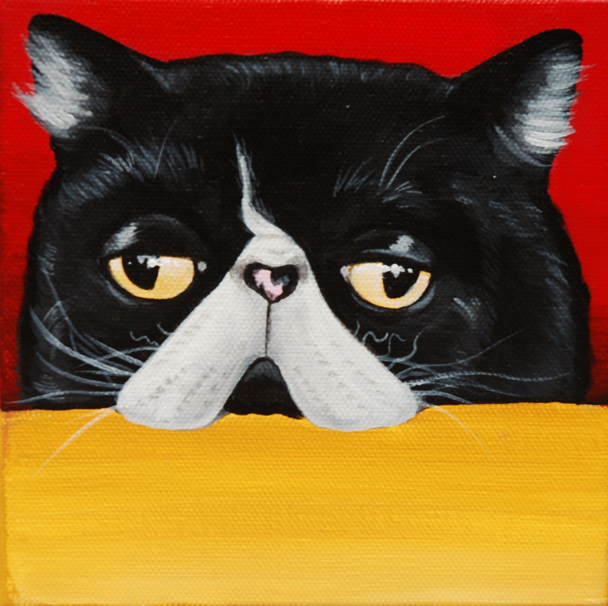 grumpy cat exotic shorthair custom pet painting.png