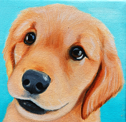 golden retriever pup painting.png