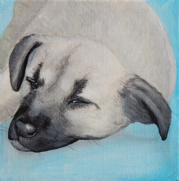 sleepy puppy painting.png