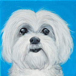 maltese painting chewy.png