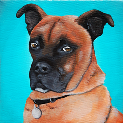 boxer mix custom pet portrait painting.png