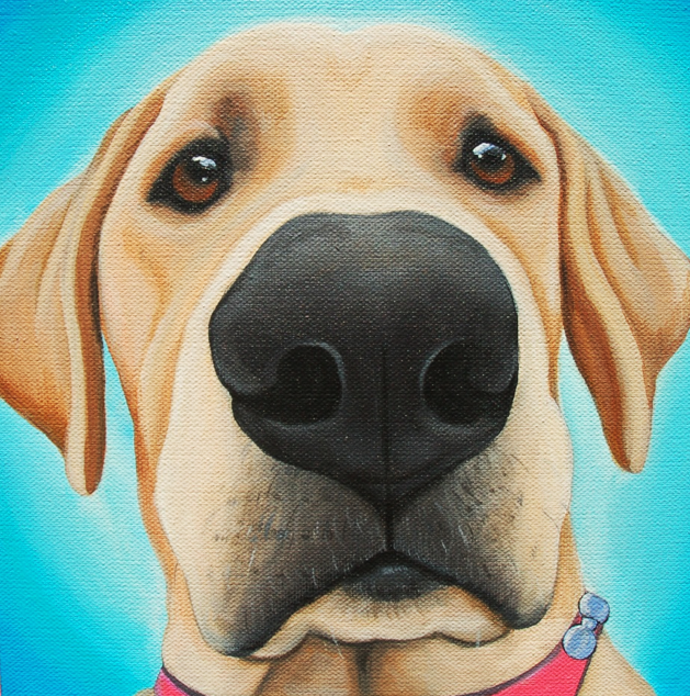 Off The Wall Paintings Hand Painted Custom Pet Portraits
