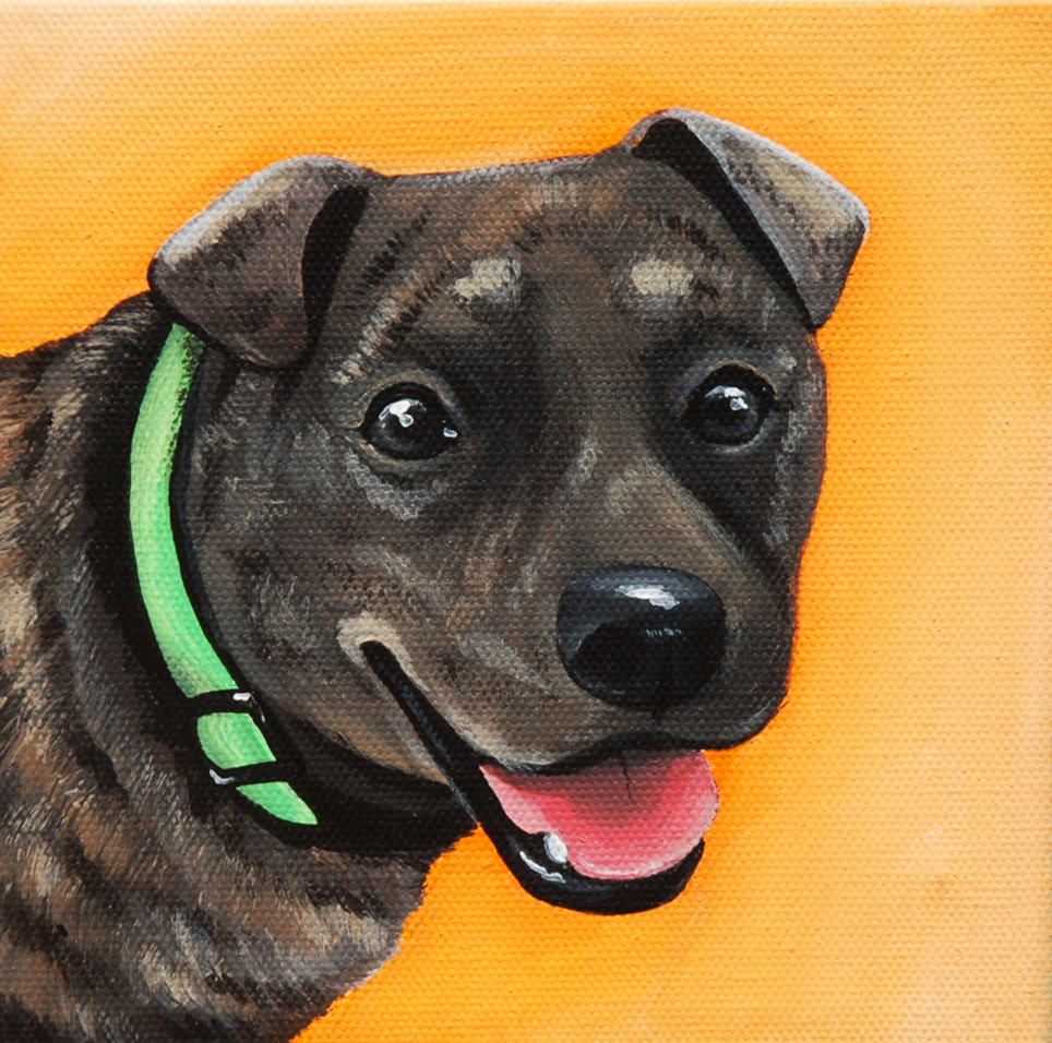 brindle pit mix painting on canvas.png