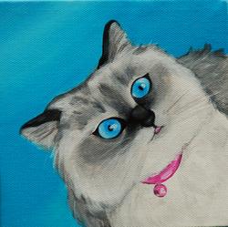 persian cat painting.png