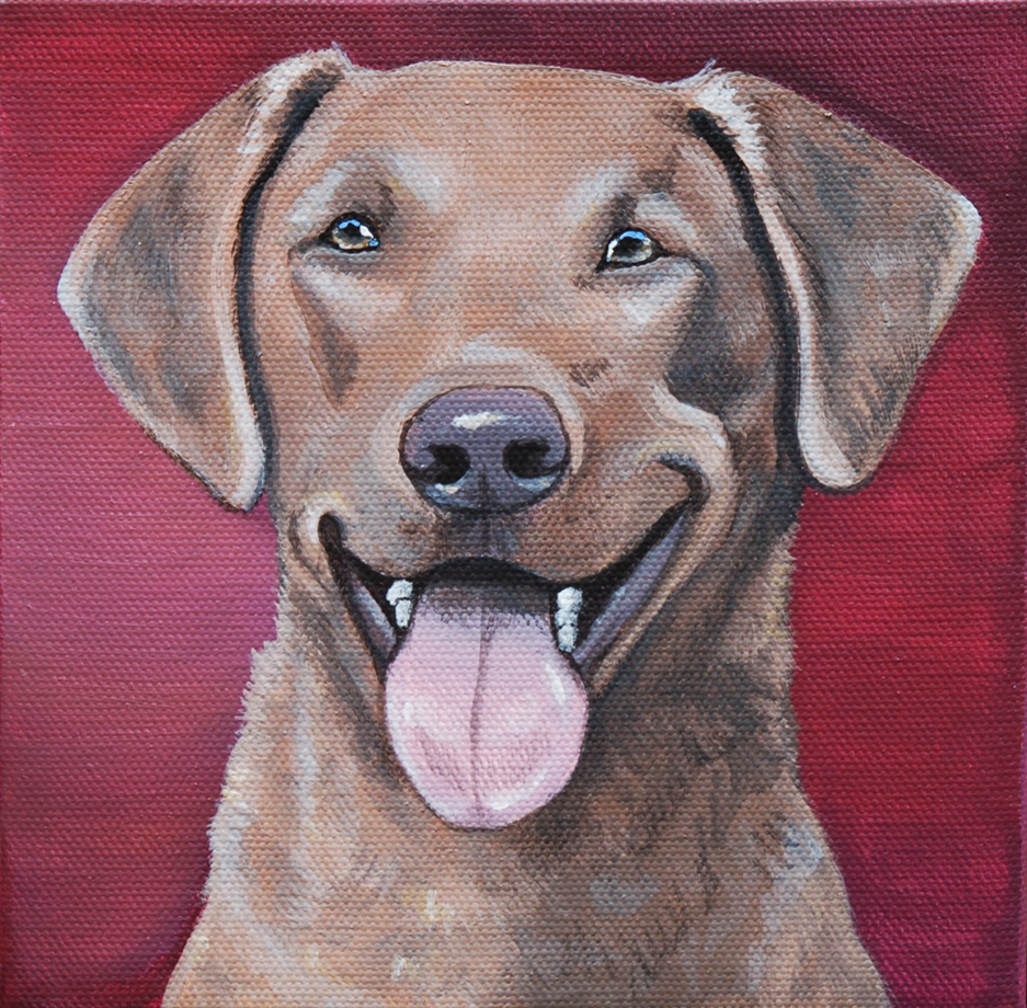 chesapeke bay retriever painting portrait on canvas.png