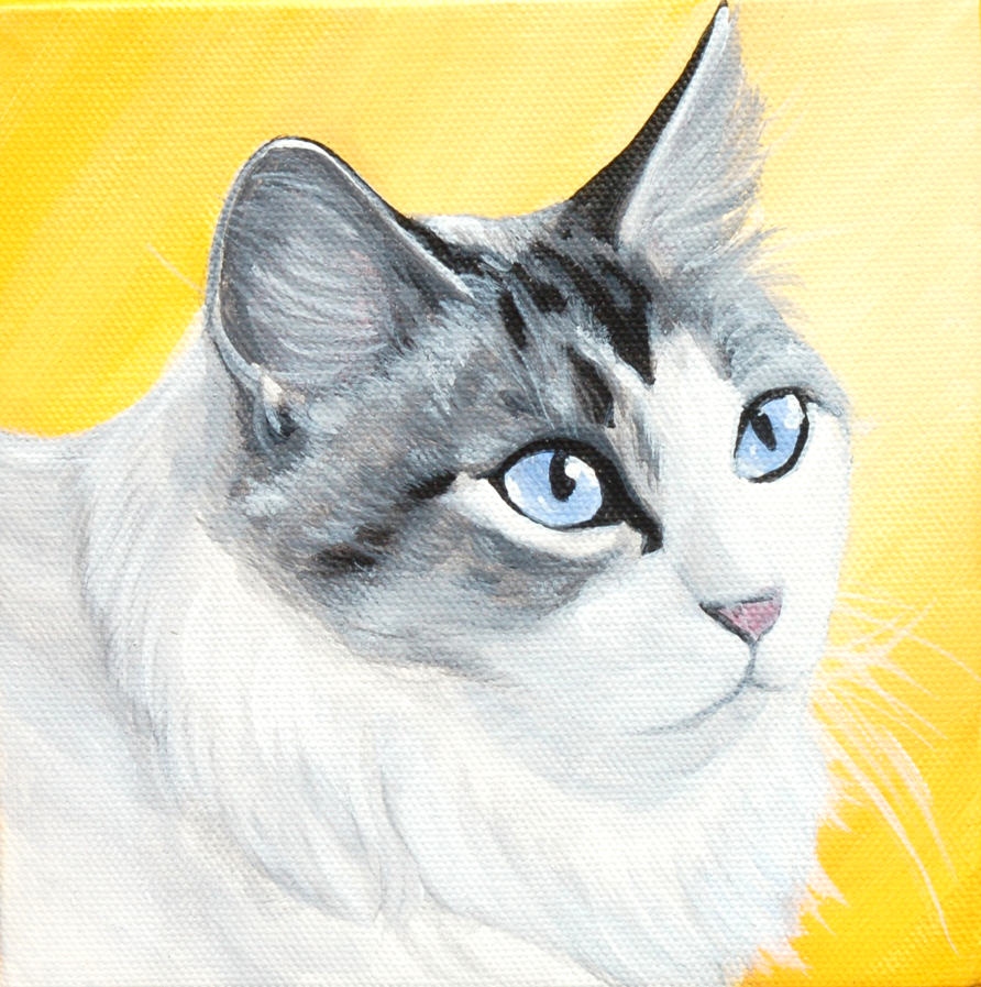 cat looking into the sun custom painting.png