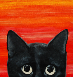 black cat peeeking