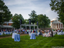 A Walk Around The Lawn: Reunions