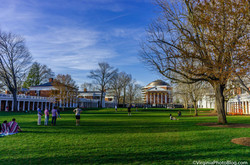 The_Lawn_0001