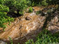 When the Creek Floods