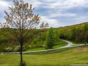Humpback Rocks: Crossing the Meadow