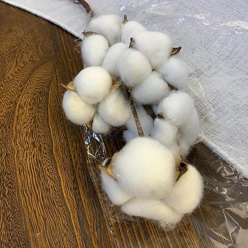 棉花(已上鐵線)