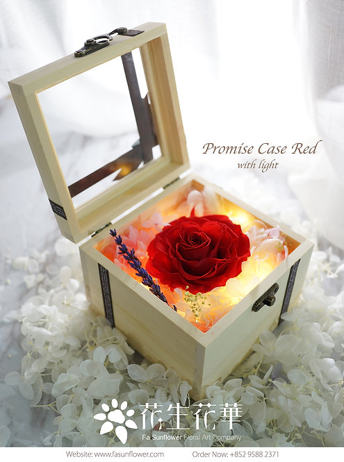 現貨Promise Case With Light(多色可選)PFPC