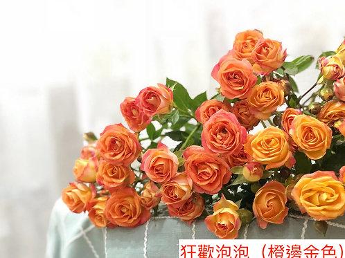多頭小玫瑰 狂歡泡泡(橙邊金色)產地昆明 8枝送2枝共10枝