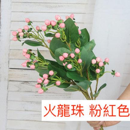 火龍珠 粉紅色 產地昆明 8枝送2枝