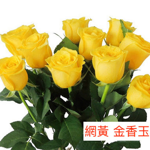 玫瑰 網黃 金香玉 產地昆明 18枝送2枝共20枝