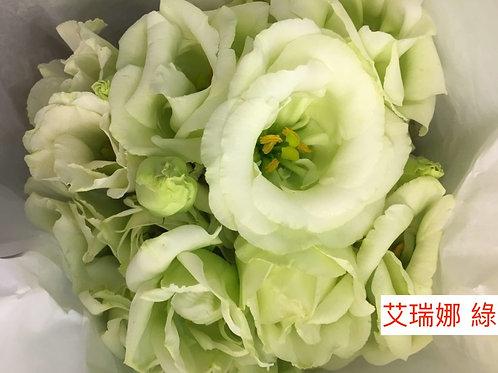 桔梗 艾瑞娜 綠 產地台灣 8枝送2枝共10枝