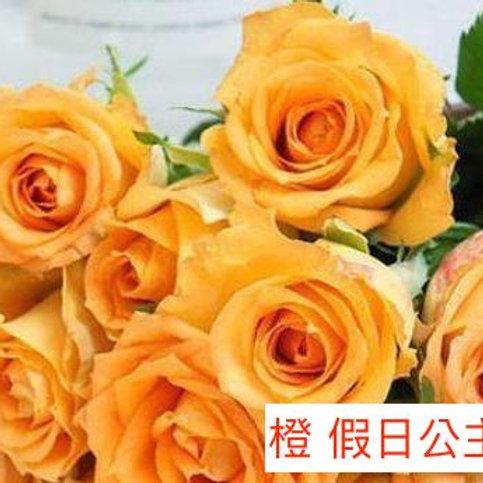 玫瑰 橙 假日公主 產地昆明 1枝