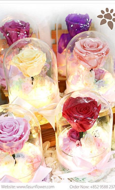 The Rose- 遙遠星球玫瑰 -夜光系列(多色可選)PF-TR