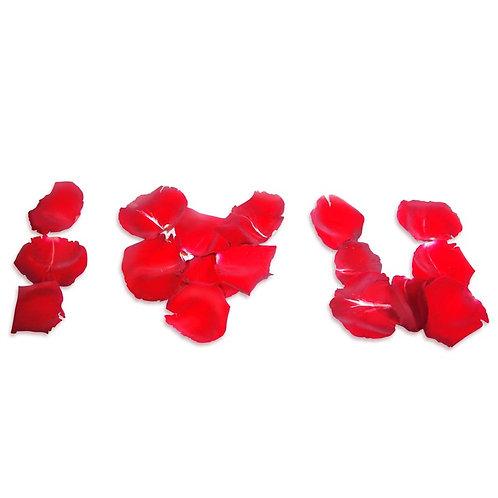 Rose Petal 花瓣 60-80片
