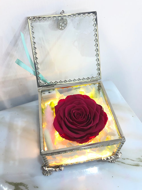 Pandora's Box (With Light)潘多拉盒子 多色可選 PF-PB
