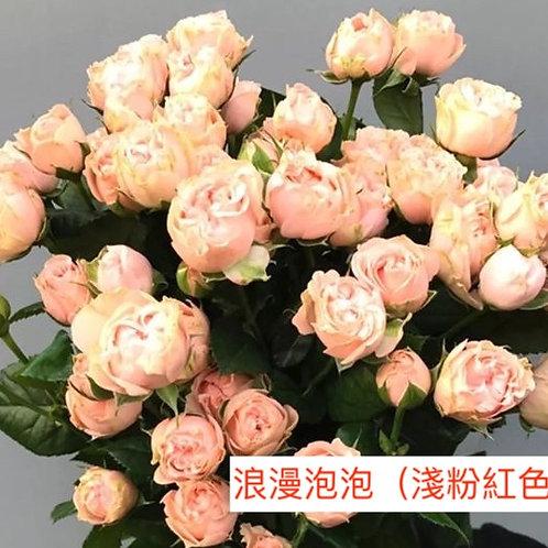 多頭小玫瑰  浪漫泡泡(淺粉紅色)產地昆明 8枝送2枝共10枝