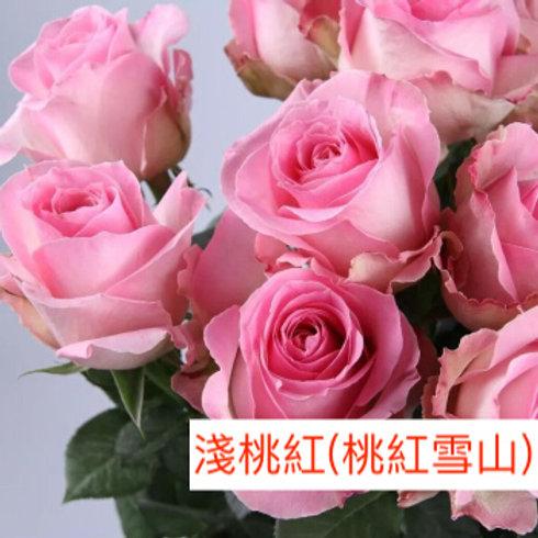 玫瑰 淺桃紅 桃紅雪山 產地昆明 18枝送2枝共20枝