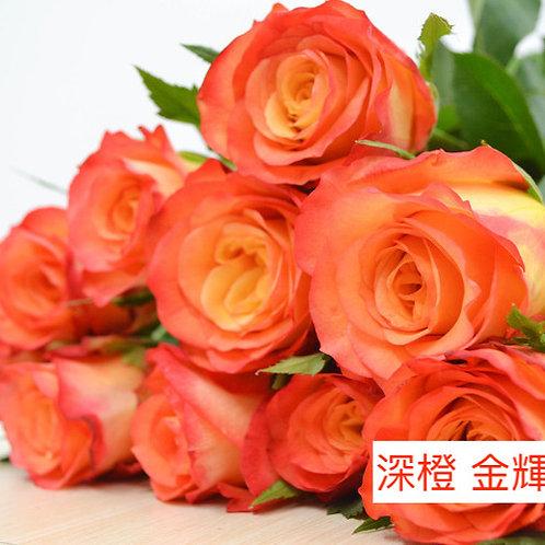 玫瑰 深橙 金輝 產地昆明 1枝