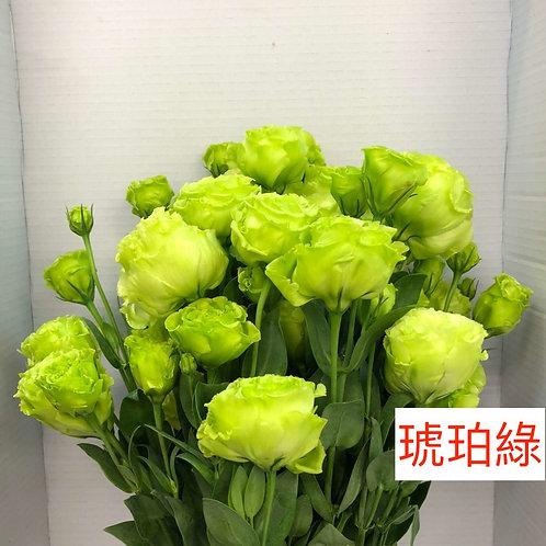 桔梗 琥珀綠 產地台灣 8枝送2枝共10枝