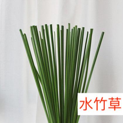 水竹草 5枝