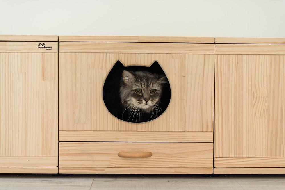 A Purrr-fect Home for Cats by Mr Shopper Studio