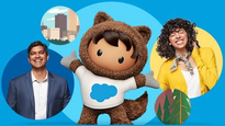 How can Salesforce's CRM Solution Help Sales, Marketing, Service, and IT Management?