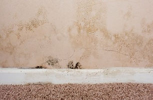 External mold caused by water leak. Mold