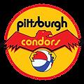 CONDORS.png