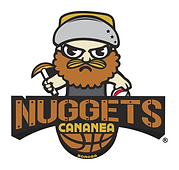 WHITE-NUGGETS DECANANEA LOGO copy.png