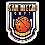 web surf logo.png