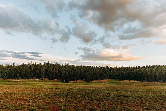 """""""Deer Field, """" Zion, Utah"""