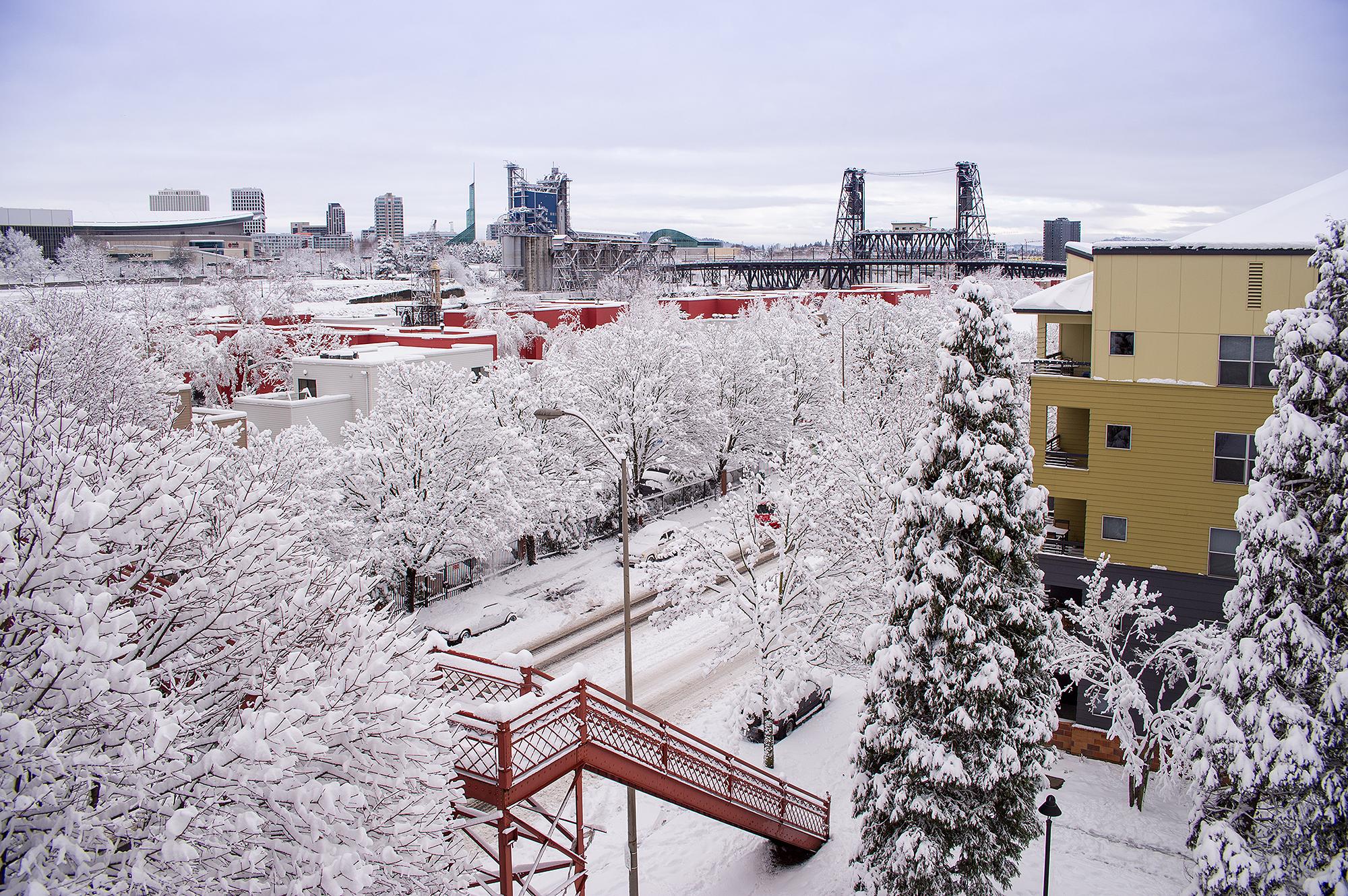 Snowmagedon 2017