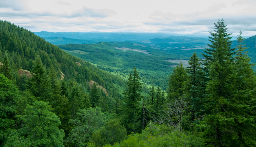 View from Saddle Mountain