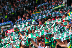 Timber's Army