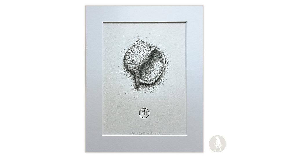 Limitiert: Kunstdruck mit Prägung im Passepartout, 30 x 24 cm