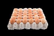 30 Eier auf Einwegpalette, Hachmeyer GbR Eiergroßhandel, Hannover, copyright: pngtree.com